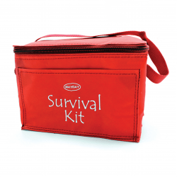 Red Vinyl Cooler Bag with handle
