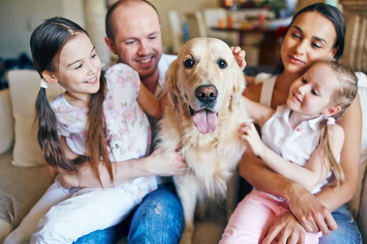Family Communications Plan